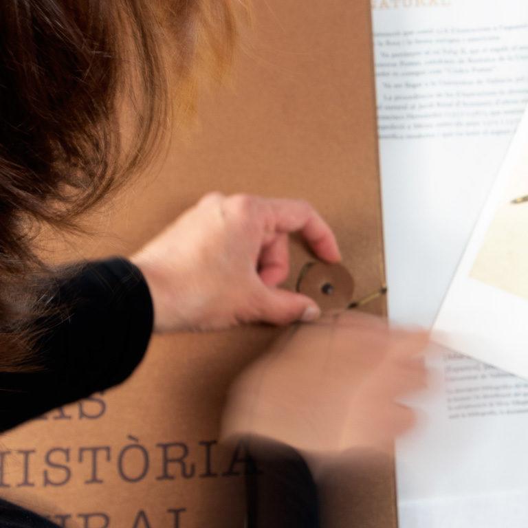 0-Armadillo-BibliotecasUV-espirelius