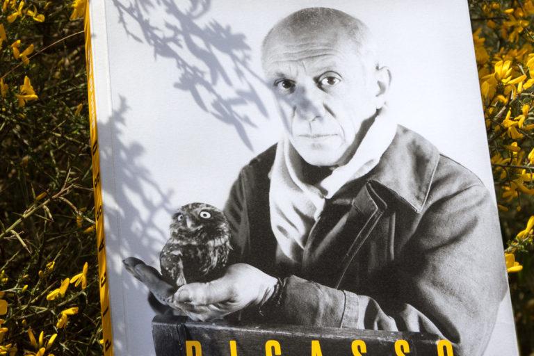 0-Picasso_FundacionBancaja-espirelius