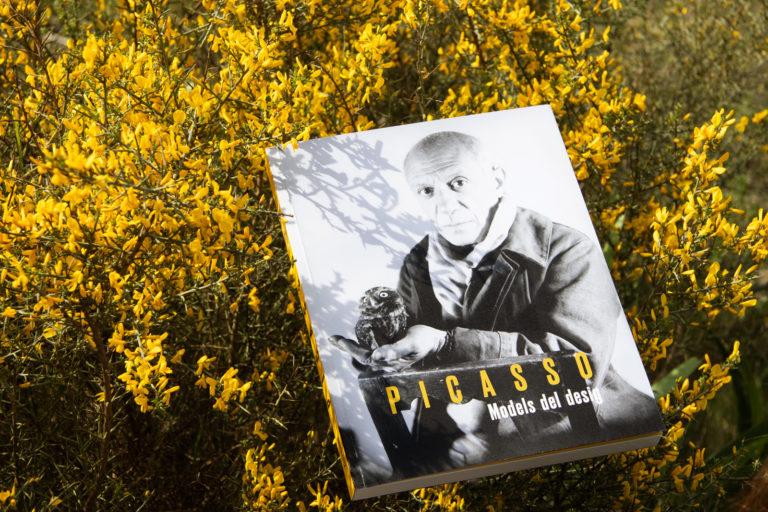 1-Picasso_FundacionBancaja-espirelius