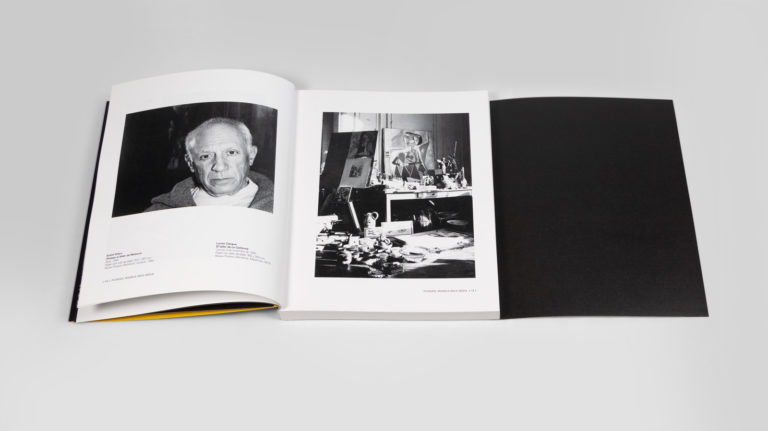 4-Picasso_FundacionBancaja-espirelius