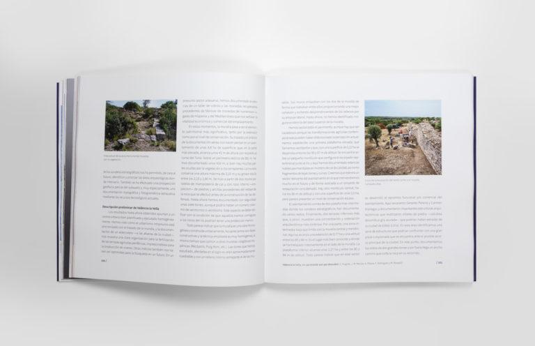 7-visigodos-MuseuPrehistoriaValencia-espirelius